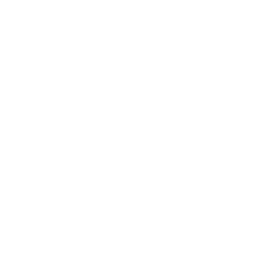 Tomahawk Robotics Logo